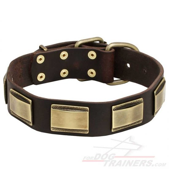 New Design Leather Dog Collar with Massive Decor