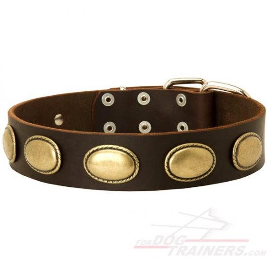 Retro Rulz - Vintage Dog Leather Collar