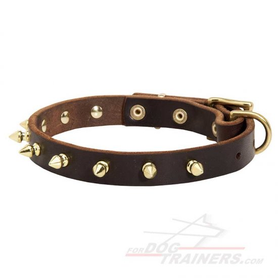 Unique Walking Spiked Leather Collar