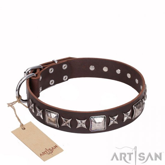'Perfect Impression' FDT Artisan Brown Leather Dog Collar with Silvery Square Studs - 1 1/2 inch (40 mm) Wide