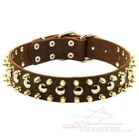 Designer Leather Dog Collar with Nickel Studs and Brass Spikes