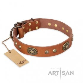'Stunning Dress' FDT Artisan Tan Leather Dog Collar with Old Bronze Look Plates and Studs - 1 1/2 inch (40 mm) wide