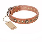 'Feast of Luxury' FDT Artisan Tan Leather Dog Collar with Old Bronze Look Circles - 1 1/2 inch (40 mm) wide