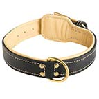 Royal Nappa Padded Handmade Leather Dog Collar for Fashion Walking