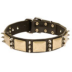 Gorgeous War Dog Leather Dog Collar Adorned with Mix of Plates and Spikes
