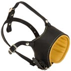 Anti-barking Leather Dog Muzzle with Soft Nappa Padding