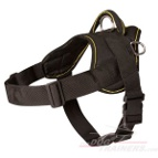 Wirehaired Pointing Griffon Nylon dog harness with handle