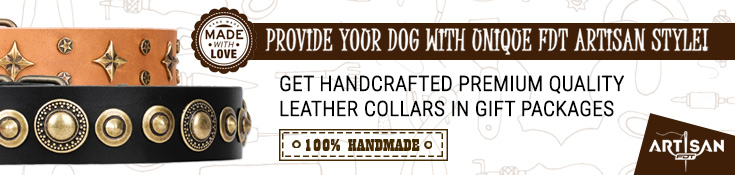 Get Handcrafted Premium Quality Leather Collars in Gift Packages