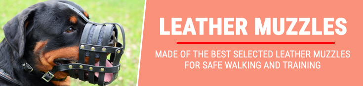 Made of the Best Selected Leather, Muzzles for Safe Walking and Training