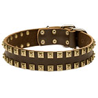"""Caterpillar"" Designer Leather Dog Collar with Square Brass Studs"