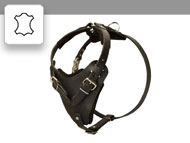 Leather Dog Harnesses