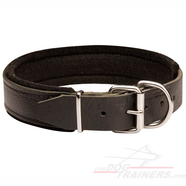 Leather Collar for training