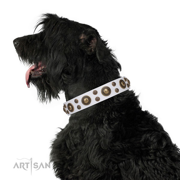 Black Russian Terrier unique genuine leather dog collar with studs