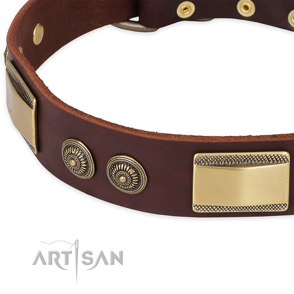 Designer Leather Dog Collar of Brown Color