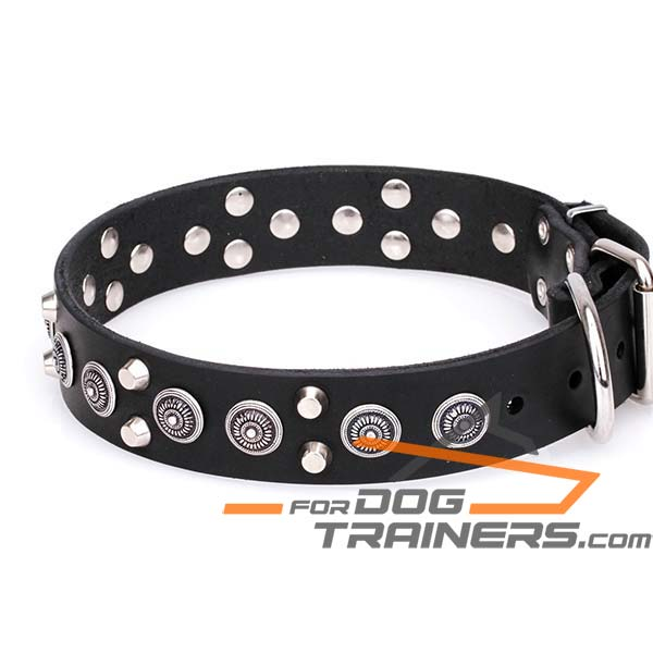 Circles and Cones Attached to Leather K9 Collar