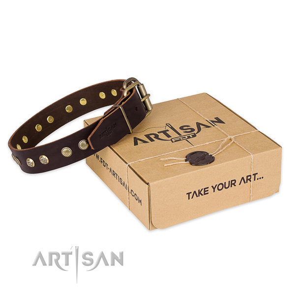 Designer Brown Leather Decorated Canine Collar