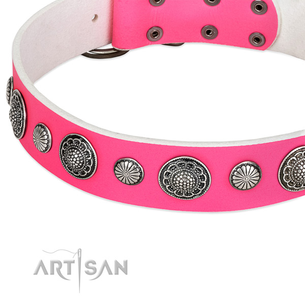 Leather Dog Collar Decorated with Studs