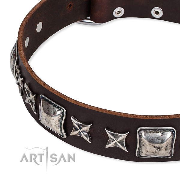 Brown Top Quality Dog Collar of Genuine Leather