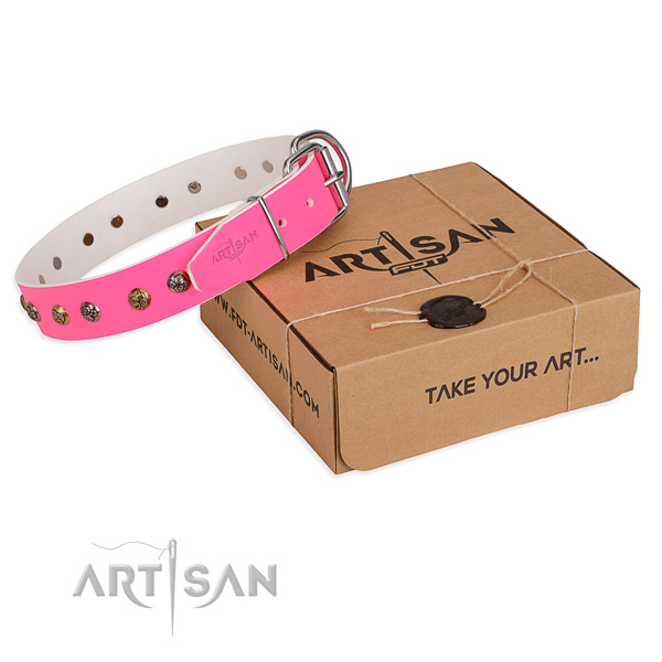 Trendy Dog Collar Decorated with Flower Type Studs