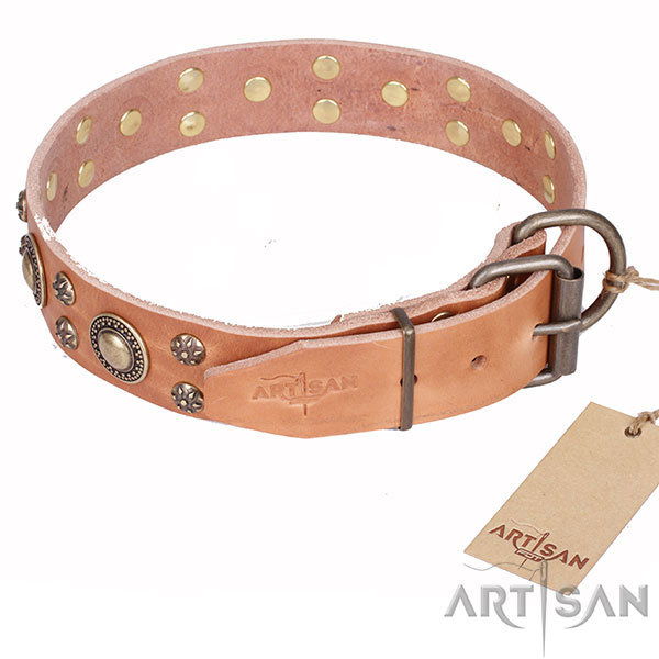 Top Quality Dog Collar with Strong Hardware