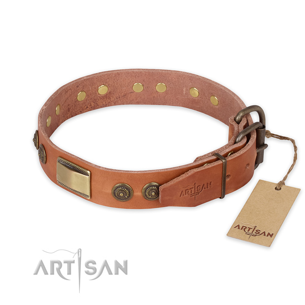 Fashionable Leather Dog Collar with Old-like Brass Plated D-Ring