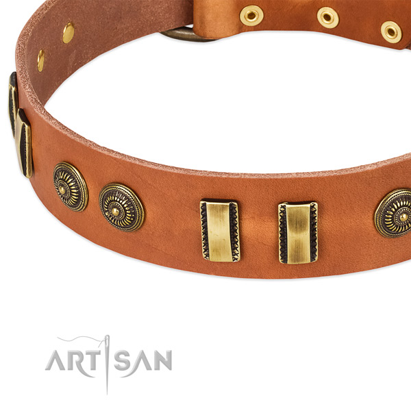Comfy tan leather dog collar with decorations
