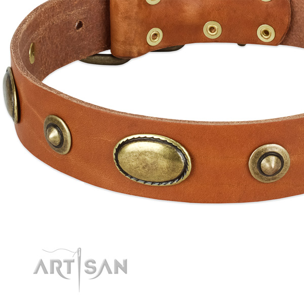 Elegant Leather Dog Collar with Bronze-Like Plated Decorations