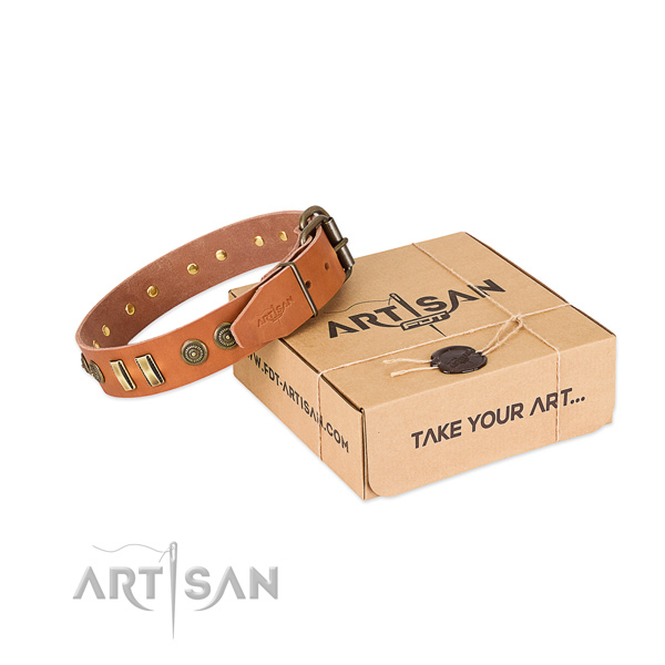 Tan leather dog collar with decorations