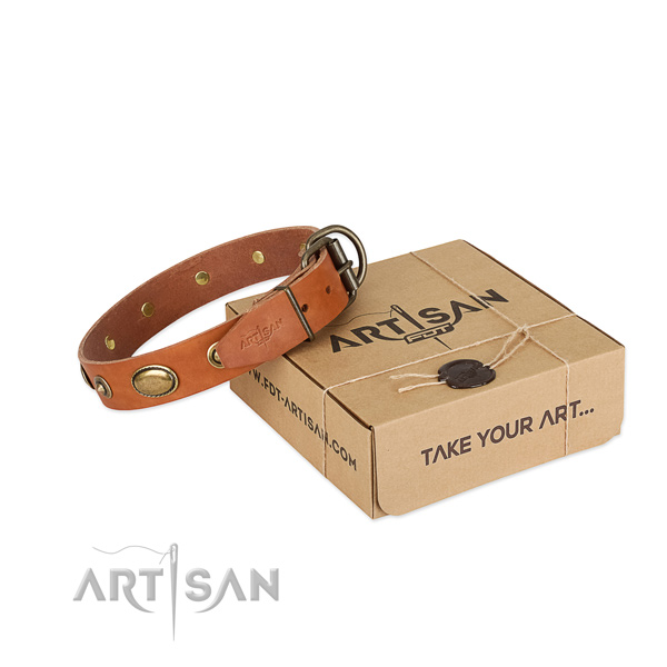 Comfortable and Safe Leather Dog Collar for Walking