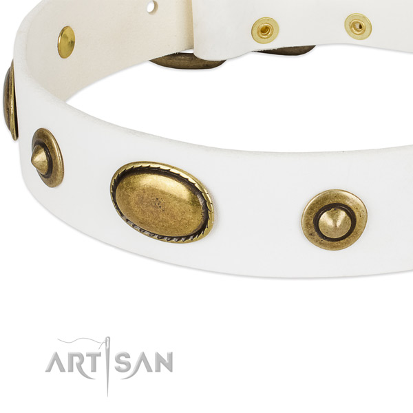 White Leather Dog Collar with Round Decorations