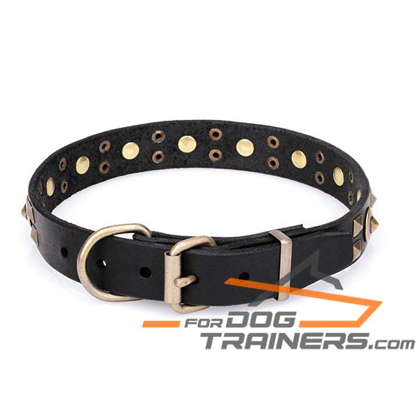 Leather Canine Collar with Rust-proof Hardware