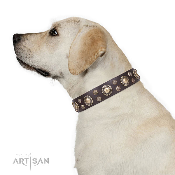 Labrador adjustable full grain leather dog collar with decorations