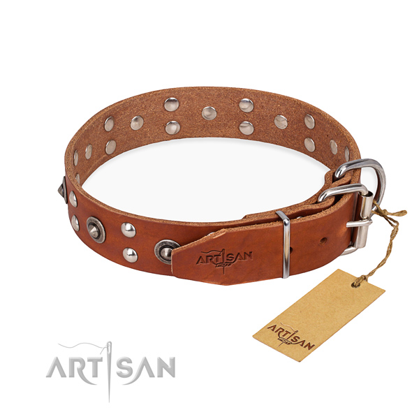 Adorned Leather Dog Collar with Studs