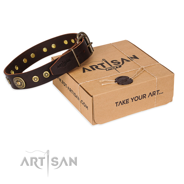 Pretty brown leather dog collar