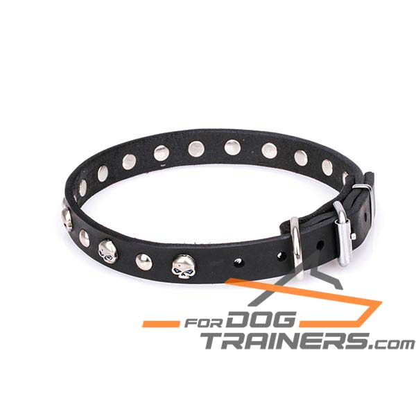 Sturdy leather dog collar