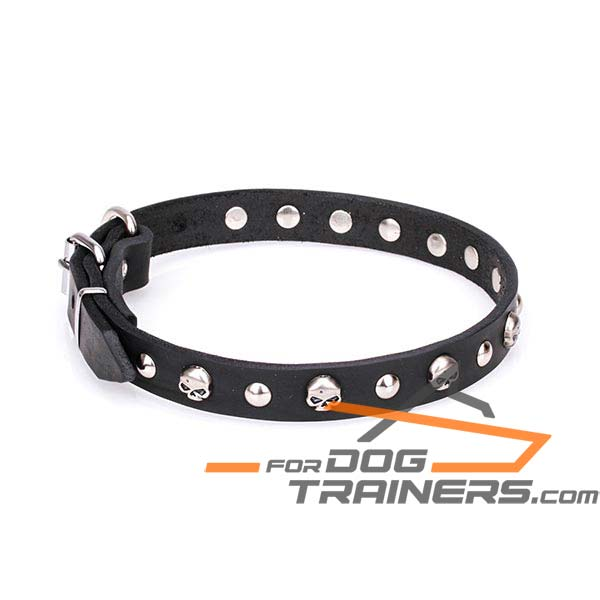 Strong dog collar made of genuine leather