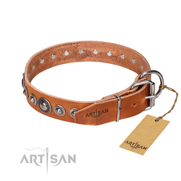 Tan leather dog collar with chrome plated buckle and D-ring