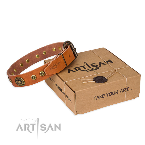 Comely tan leather dog collar