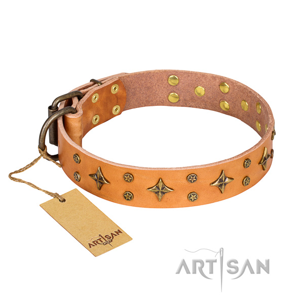 Walking tan leather dog collar with decorations
