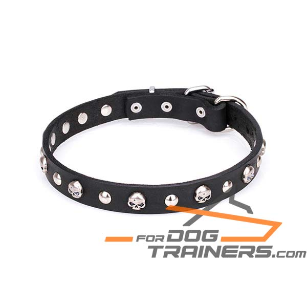 Safe leather dog collar