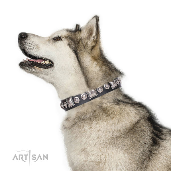 Malamute adorned genuine leather dog collar with decorations