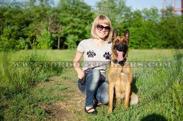 Stylish leather collar for Malinois walking