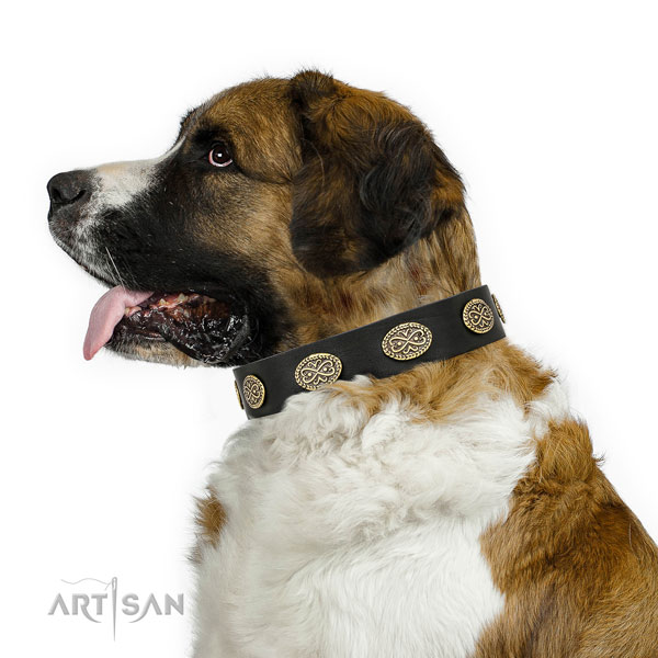 Moscow Watchdog handy use dog collar of designer leather