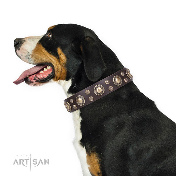 Swiss Mountain Dog stylish full grain leather dog collar with adornments