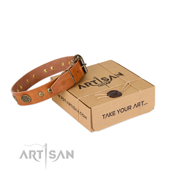 Stylish tan leather dog collar with decorations