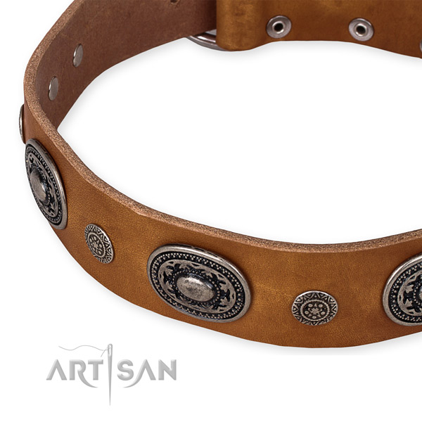 Tan leather dog collar with reliably fixed decorations