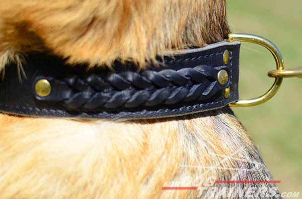 Ideally Positioned Brass Strong D-Ring for Secure Attachment of Canine Leash