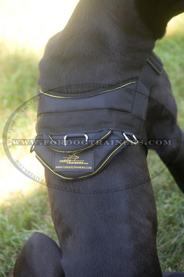 Dog harness with handle for better control