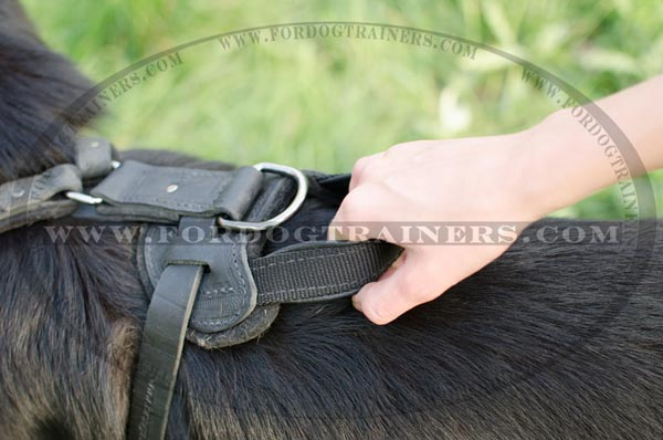 Handle on German Shepherd Harness Leather for Training