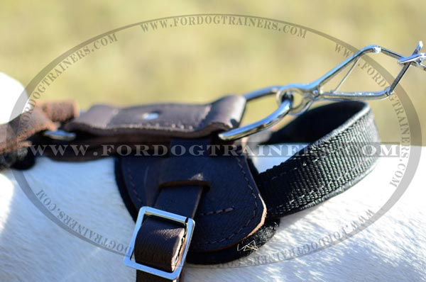 Durable Nickel D-ring on Leather Dog Harness